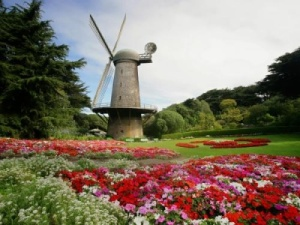 north_dutch_windmill_and_queen_wilhelmina_tulip_gardens_golden_gate_park_san_francisco_california_wallpaper-t2