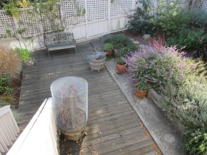 GAM_garden2